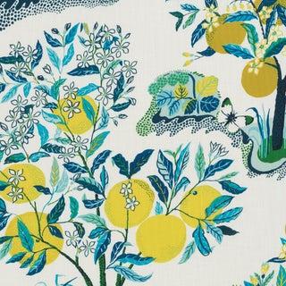 Schumacher Citrus Garden Indoor/Outdoor Fabric in Pool For Sale