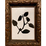 Image of Black and White Plant Study in Carved Wood Frame For Sale