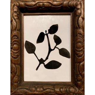 Black and White Plant Study in Carved Wood Frame For Sale
