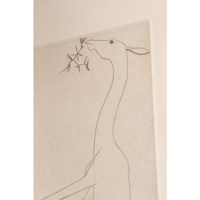 Etching of a Deer by Beth Van Hoesen (1926-2010) California For Sale - Image 4 of 13