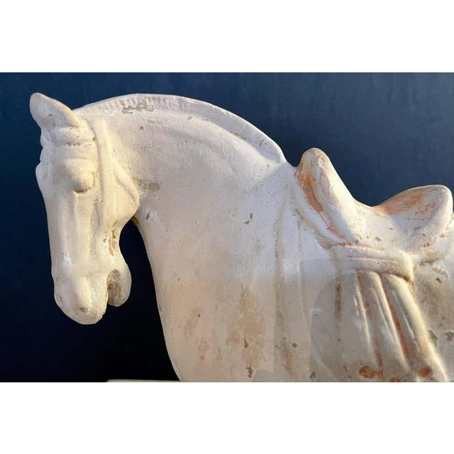 Antique Tang Pottery Horses - a Pair For Sale - Image 10 of 13