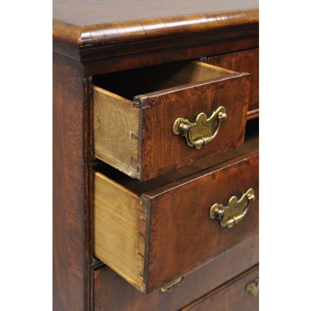 Gold 19th Century Queen Anne Burr Walnut Inlaid Chest of Drawers For Sale - Image 8 of 13