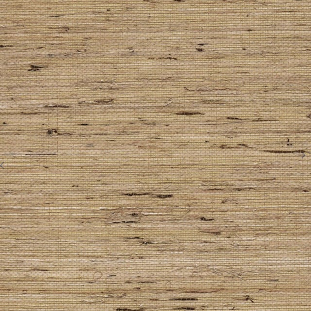 2010s Jonathan Adler Grasscloth Wallpaper in Oatmeal For Sale - Image 5 of 5