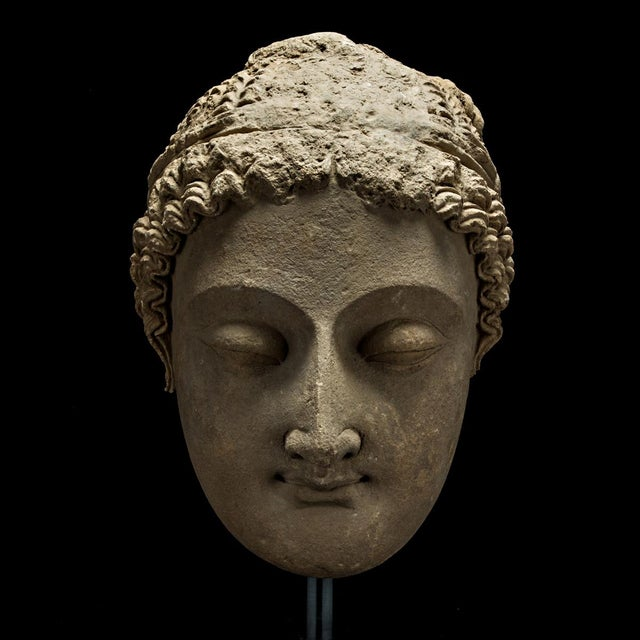 15th Century & Earlier Gandharan Stucco Head of Buddha For Sale - Image 5 of 5