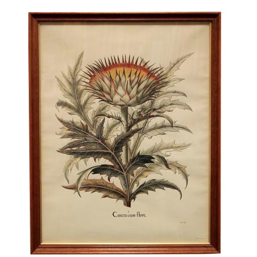 """Cinera Cum Flore"" Hand-Tinted Botanical Print - Image 1 of 8"