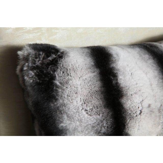 Custom Rex rabbit pillow.