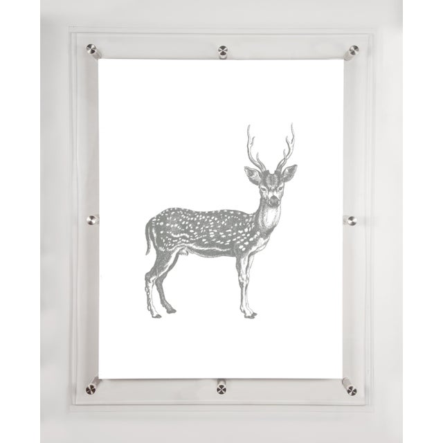 "Framed wall art printed in fuschia in museum quality acrylic frames - overall size 12 "" x 15"". Image printed on cotton..."