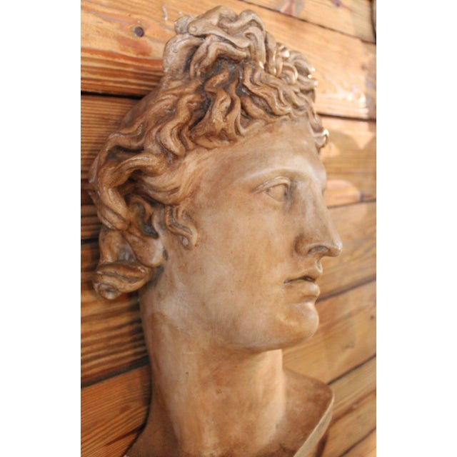 "Plaster ""Apollo Belvedere"" Wall Plaque For Sale - Image 4 of 10"