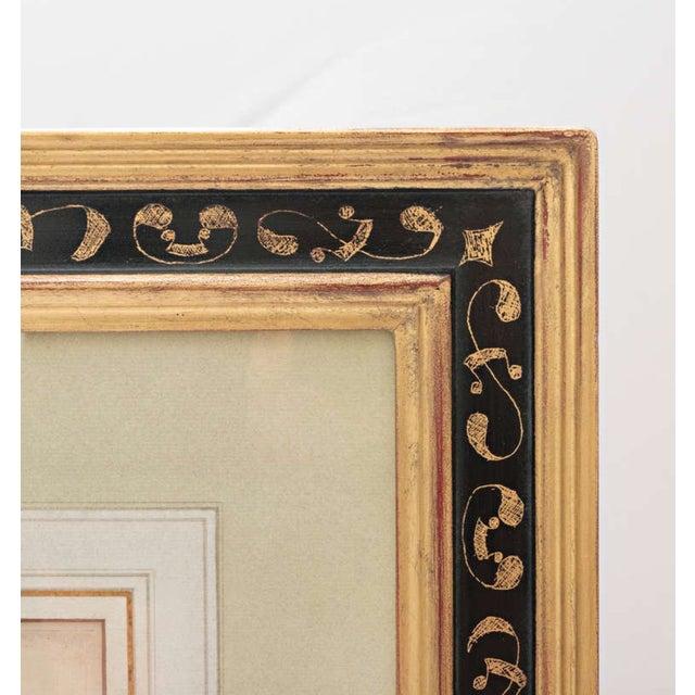 "17th Century Basil Besler ""Ornithogalum Spicatum"" Botanical Print For Sale In Nashville - Image 6 of 7"