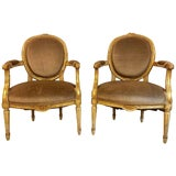 Image of Gilt Gold Paint Decorated & Carved Louis XVI Style Armchairs or Fauteuil - a Pair For Sale