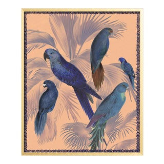 Tropical Bird Gold Framed Print For Sale