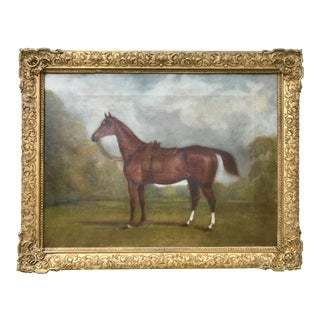 Antique Portrait of a English Ladies Horse by Edward Lloyd 1870 For Sale
