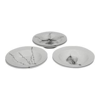 Contemporary 222 Fifth Botanica Series Large Rim Bowls - Set of 6