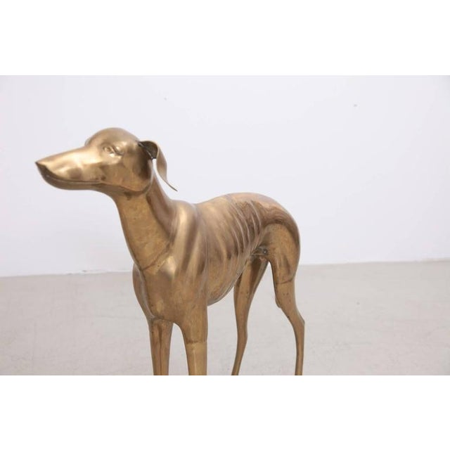 Extraordinary huge dog or greyhound made of brass. It's in very good condition and it brings the Hollywood Regency glamour...