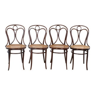 Antique Thonet No. 19 Bentwood Chairs - Set of 4