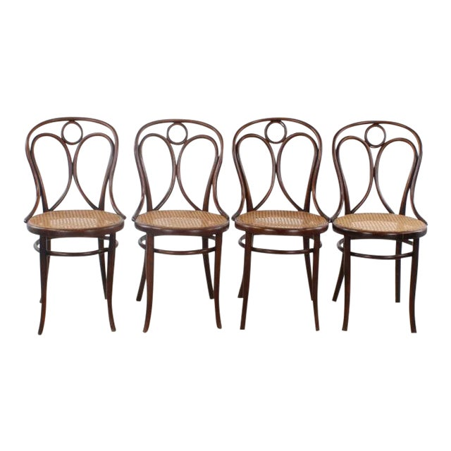 Antique Thonet No. 19 Bentwood Chairs - Set of 4 For Sale - Antique Thonet No. 19 Bentwood Chairs - Set Of 4 Chairish