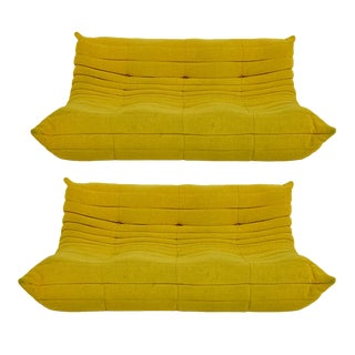 Michel Ducaroy for Ligne Roset Rare Yellow Toga Sofa / Large Settee 2 Available For Sale