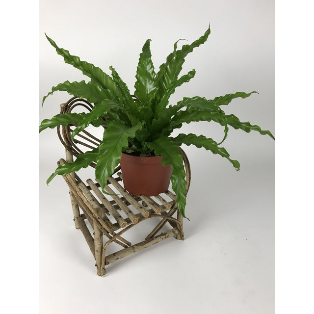 Brown Bent Twigs Heart Chair Plant Stand For Sale - Image 8 of 10