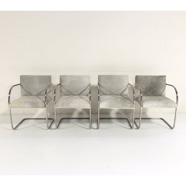 Brno Style Cowhide Chairs - Set of 4 - Image 5 of 7