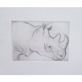 Gray Rhino by Sylvia Roth