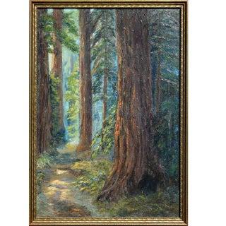 """1924 """"Redwood Groves, Santa Cruz County"""" Forest Landscape Oil Painting, Framed For Sale"""