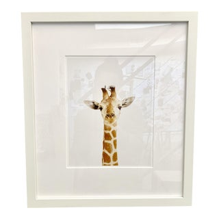 Contemporary Framed Giraffe Print For Sale