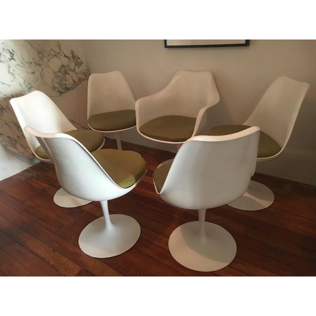 Knoll 1960s Danish Modern Eero Saarinen for Knoll Tulip Chairs - Set of 6 For Sale - Image 4 of 10