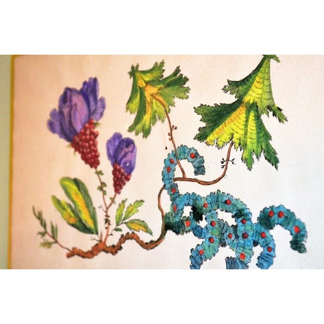 French Chinoiserie Hand Colored Floral Prints - Image 10 of 11