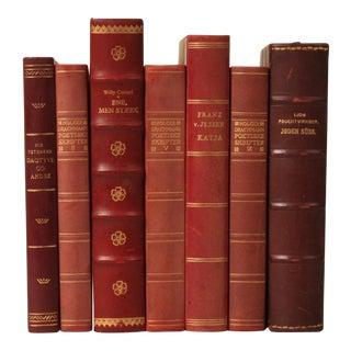 Scandinavian Leather-Bound Books S/7