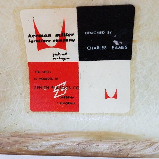 1950s Danish Modern Charles & Ray Eames for Zenith Plastics Fiberglass Chair For Sale - Image 12 of 13