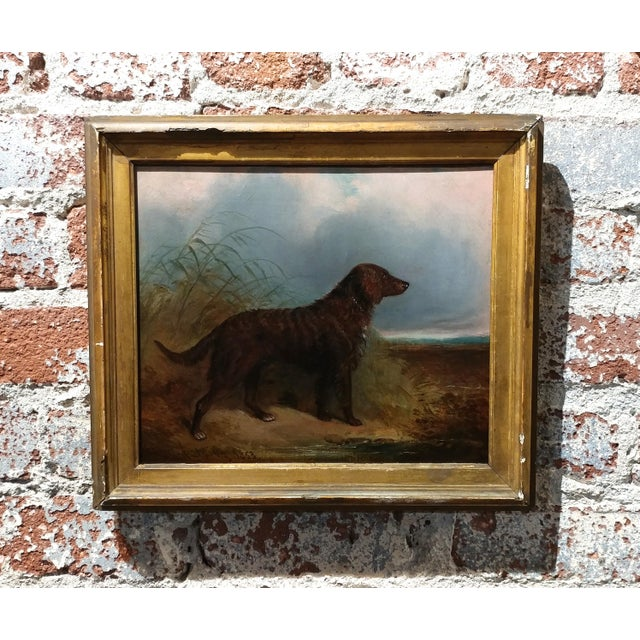 Charles Bilger Spalding (British 1810-1871) Irish Setter -Original Oil Painting . Signed and dated 1853 frame size 11 x...