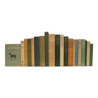 Vintage Wilderness Book Set - Set of 20 For Sale