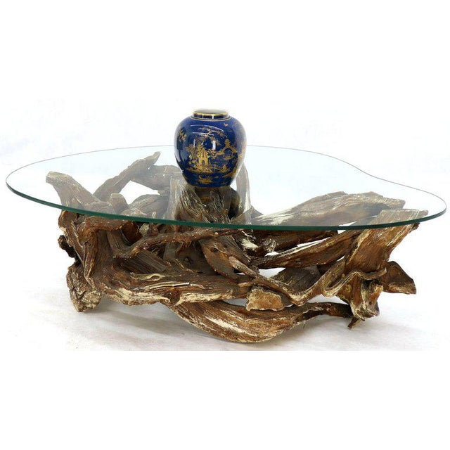 Gesso Washed and Stained Kidney Shape Glass Top Natural Driftwood Coffee Table For Sale - Image 4 of 13