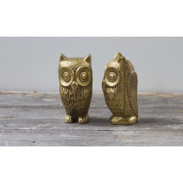 Brass Plated Owl Figurines - A Pair - Image 3 of 7