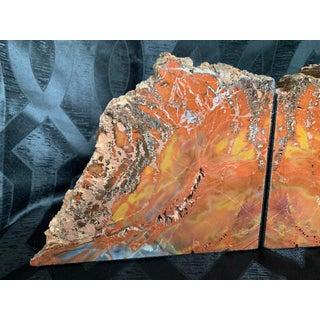 "Gem Grade Petrified Wood Bookends Araucaria ""Arizona Rainbow Wood"" - a Pair Preview"