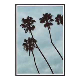 Palm Sky (Blue) Photograph For Sale