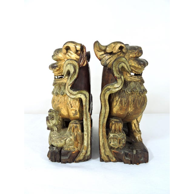 Asian Antique Chinese Carved Gilt Wood Temple Foo Lions- a Pair (Foo Dogs) For Sale - Image 3 of 9