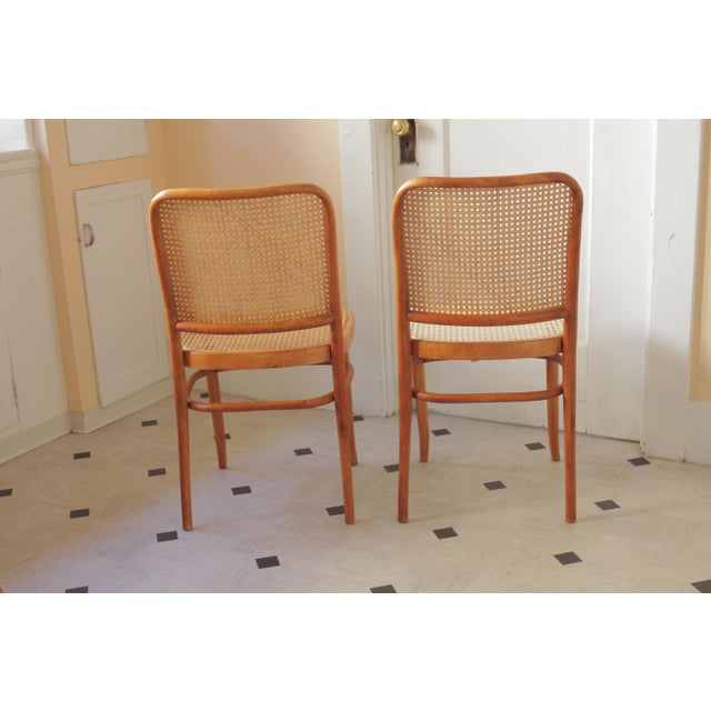 Thonet Josef Hoffmann 811 Prague Chairs - A Pair For Sale - Image 4 of 8