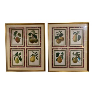 Late 19th Century Eight Hand Colored Botanical Prints, Framed - Set of 2 For Sale