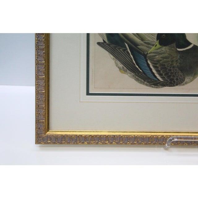 Asian Japanese Mallards Print in Gilt Frame For Sale - Image 3 of 7
