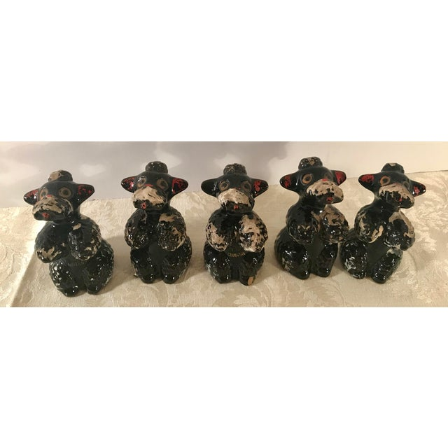American Black Poodle Shakers - Set of 5 For Sale - Image 3 of 10