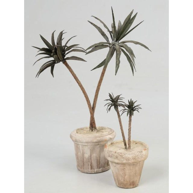 French Metal Palm Trees in Clay Pots For Sale - Image 13 of 13