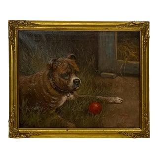 Edwardian Dog Portrait, England For Sale