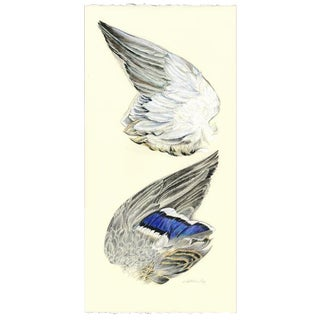 "Naturalist Original Drawing, ""Wing of a Mallard"" by Kathleen Ney For Sale"