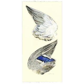 Wing of a Mallard Original Drawing For Sale