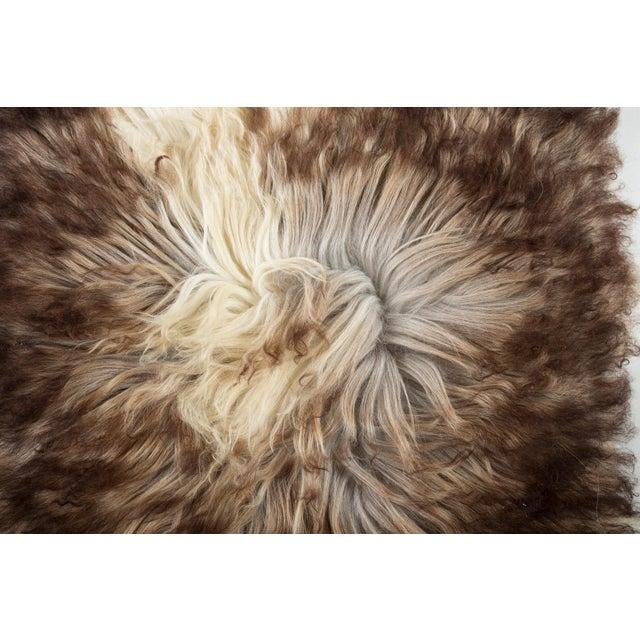 "Lights Contemporary Natural Sheepskin Pelt - 2'0""x3'0"" For Sale - Image 7 of 8"