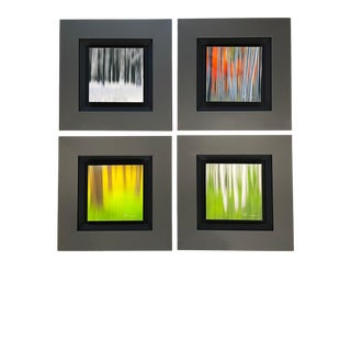 """""""Blur II"""" Contemporary Element Pack Photographs by Peter Lik, Framed - Set of 4 For Sale"""
