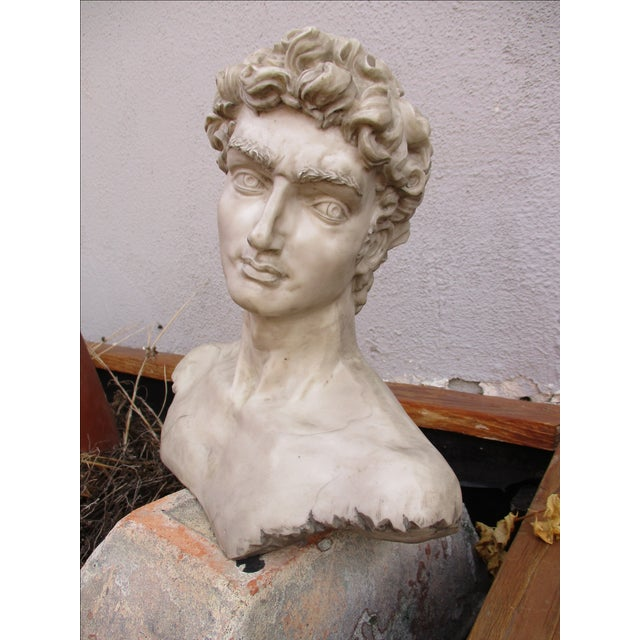 Neoclassical Vintage Cast Resin Bust - Image 7 of 11
