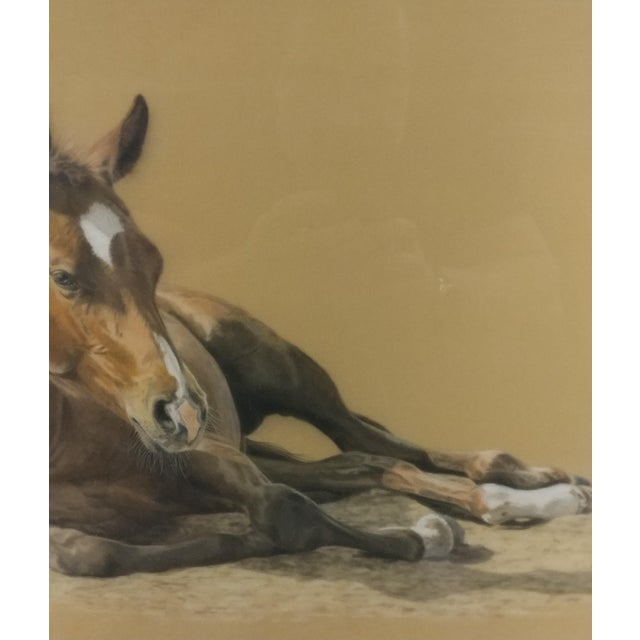 Valery Trozelle - young Horse Resting -Beautiful Painting - Image 3 of 6