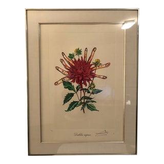 "Salvador Dalí ""Dahlias of Dali"" (Dahlia Rapax) From Surrealist Florals For Sale"